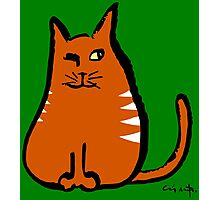 Sly Cat Photographic Print