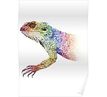 bearded dragon rainbow Mix Poster