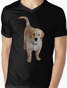 Cute Lil Puppy Mens V-Neck T-Shirt