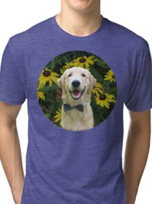 Classy Golden Retriever Tri-blend T-Shirt