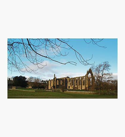 Bolton Priory Photographic Print