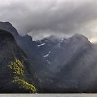 The Grandeur of Milford Sound by Peter Hammer