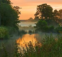 Summer Dawn by David Dean