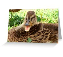 Quackers and Cheese! Greeting Card