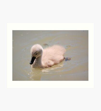 Ugly Duckling Art Print