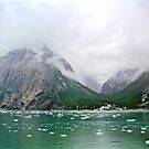 Glacial Valleys by Barbara  Brown