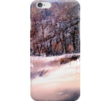 Winter Squall iPhone Case/Skin
