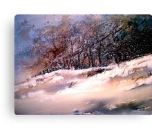Winter Squall Canvas Print