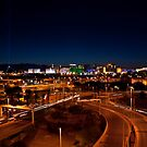 Las Vegas  by Nenad  Njegovan