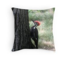 Woody the Woodpecker Throw Pillow