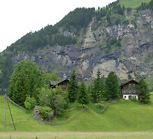 Typical mountain chalets in Kandersteg, Switzerland by Marika Siegenthaler