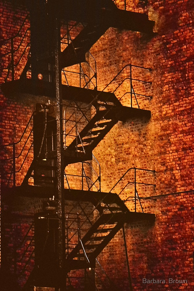 City Escape by Barbara  Brown