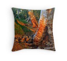 photoj S.A. Flinders Rangers Throw Pillow