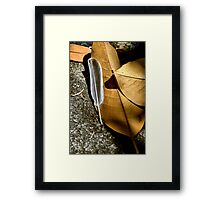 Feather and Leaves Framed Print