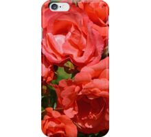 Coral colored roses iPhone Case/Skin