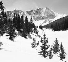 The High Country by Eric Glaser