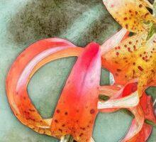 Wild Turk's Cap Lily Sticker