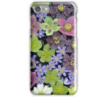 Colorful hellebore flowers iPhone Case/Skin