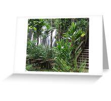 Picnic In The Park - Paronella Park, Queensland Greeting Card