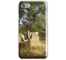 Abandoned Cottage Ruin iPhone Case/Skin