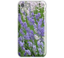 Purple lavender flowers iPhone Case/Skin