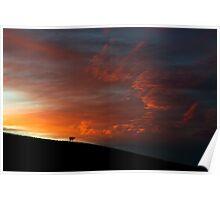 Alone, Flinders Ranges Sunrise Poster
