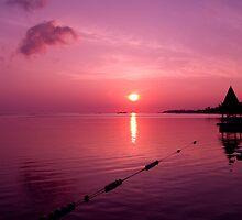 Jamaican Sunrise by ArtforARMS