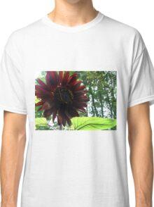 black Sunflower 2015 a Classic T-Shirt