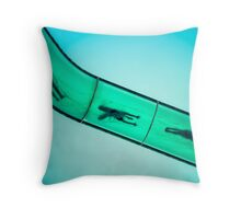 Sliding into Summer Throw Pillow