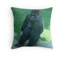 """""""Pose for the Camera"""" Throw Pillow"""