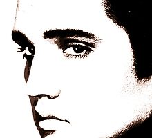 Elvis by Crystal Potter