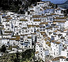 White villages , Casares , Spain by yoshiaki nagashima