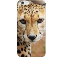 Looking to Survive iPhone Case/Skin