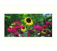 Sunny Summer Garden  Art Print
