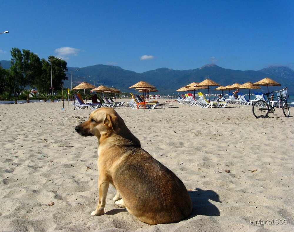 Beach guard by Maria1606