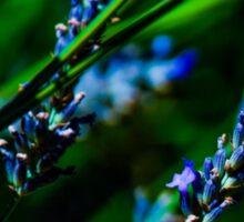 Lavender Bumblebee Sticker