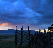 Desert Rain  by Jeanne  Nations