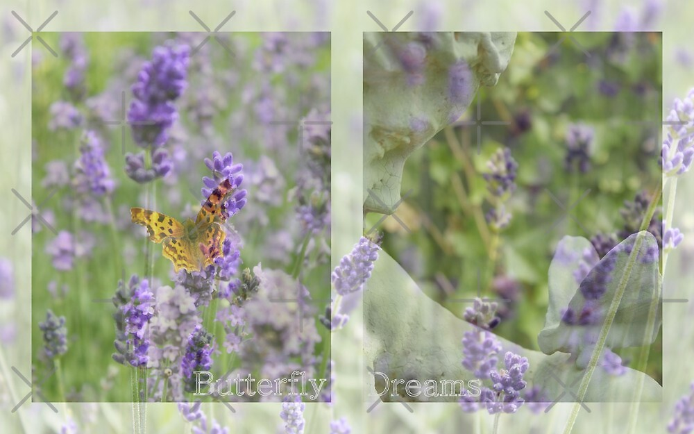 Butterfly Dreams - JUSTART © by JUSTART
