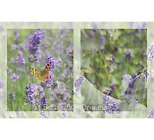 Butterfly Dreams - JUSTART © Photographic Print
