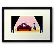 Sugar Break Framed Print