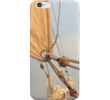 Holding Fast iPhone Case/Skin