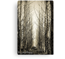 Silent Moments Canvas Print
