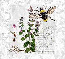 Shabby Chic Thyme herb Bumble Bee illustration art by Glimmersmith