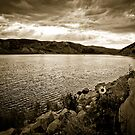 Sunlight in Sepia by Kory Trapane