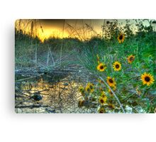 Water Flower Morning Canvas Print