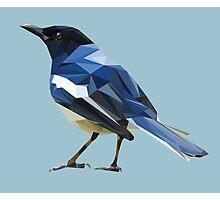 Blocky Blue Bird Photographic Print