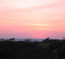 Cornish Sunset (5983) by Tony Payne