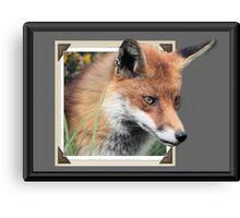Framed Fox Canvas Print