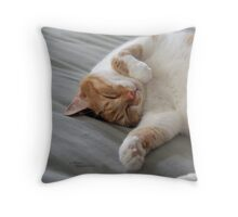 Cute cat sleeping Throw Pillow