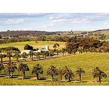 Springtime in the Barossa Valley Photographic Print